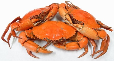 Chilled Crabs